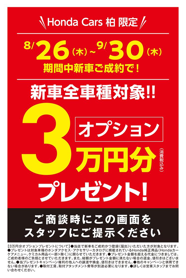 2108HC柏3万円成約プレLP